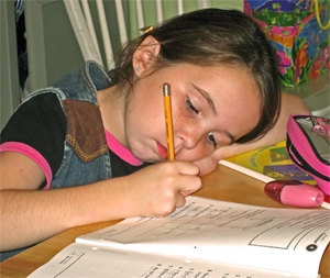 Northern Virginia Home School Tutors
